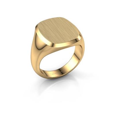 Foto van Heren ring Pepijn 4 585 goud