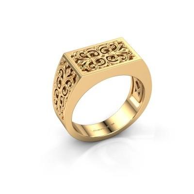 Foto van Heren ring Wouter 585 goud