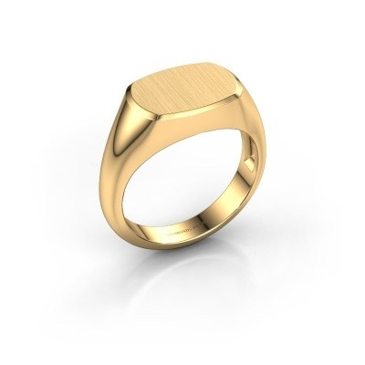 Foto van Mannen ring Daan 585 goud