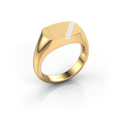 Foto van Heren ring Bram 1 585 goud