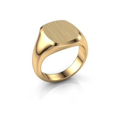 Foto van Heren ring Pepijn 3 375 goud