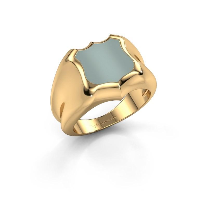 Zegelring Nevin 585 goud groene lagensteen 12x12 mm